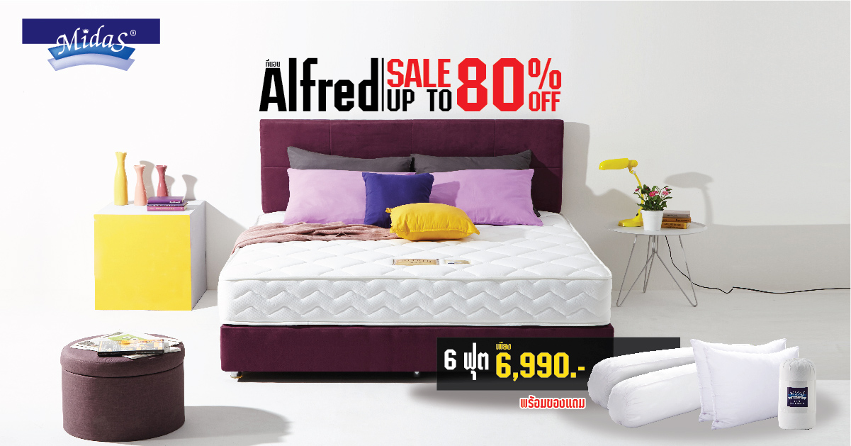 Promotion : Alfred Sale 80%